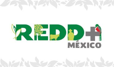 REDD+ México