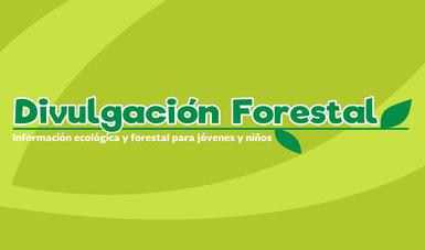 Divulgación forestal