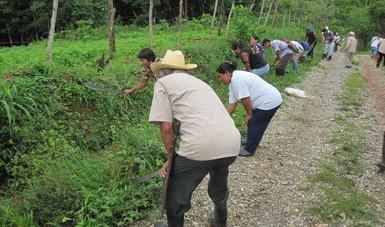 Se realizaron dos mil 102 proyectos con los cuales se desarrollaron acciones de conservación y restauración en 583 mil 098.79 hectáreas. Asimismo, se elaboraron 120 estudios técnicos y se impartieron 305 cursos de capacitación.