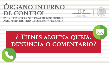 Quejas Ante El Rgano Interno De Control Financiera