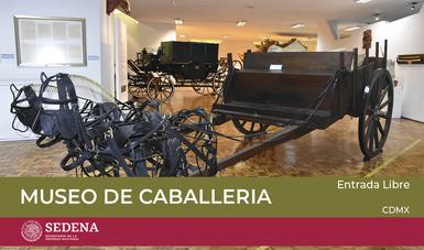 Museo de Caballería.