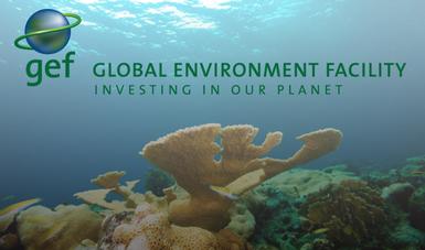 Manejo integrado transfronterizo con enfoque de la cuenca al arrecife para el Sistema Arrecifal Mesoamericano.