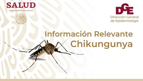 Infochikungunya
