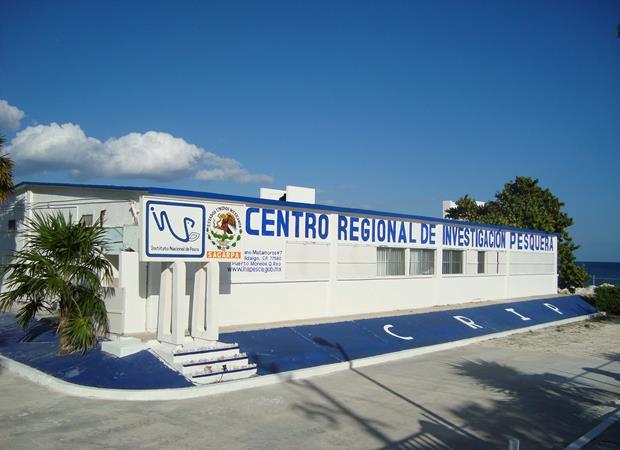 CRIP Pto. Morelos