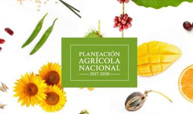 Planeación agrícola nacional