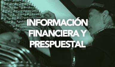 En este apartado puedes acceder a los Estados Financieros, información presupuestal y los dictámenes de Auditoría Externa de la Entidad.