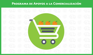 Programa de Apoyos a la Comercialización 2018