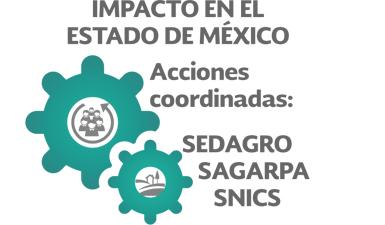Impacto en el Estado de México