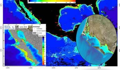 imagen de Mapa térmico de la República Mexicana