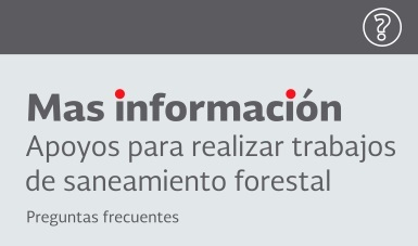 Apoyos_realizar_trabajos_saneamiento_forestal