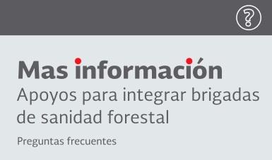 Apoyos_integrar_brigadas_sanidad_forestal