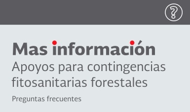 Apoyos_contingencias_fitosanitarias_forestales