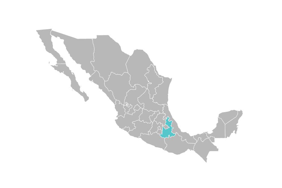 Delegación CEAV Puebla