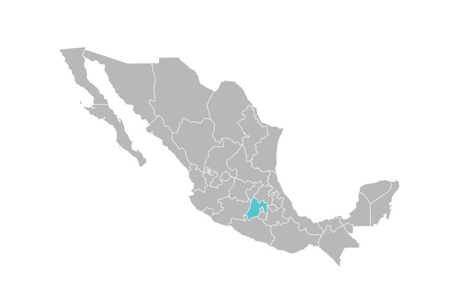 Delegación CEAV Estado de México