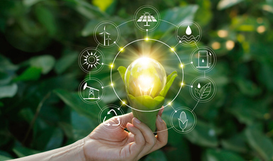 Sección sobre Estándares Voluntarias en Materia de Sustentabilidad o normas sustentables