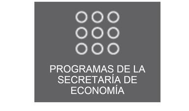 Programa de Financiamiento a MIPYMES basado en activos -incentivo RUG.