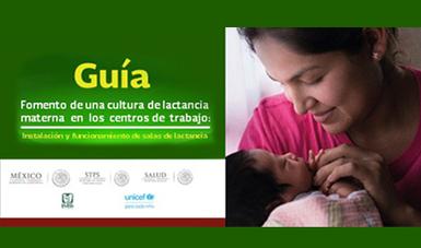 Portada de la Guía de Fomento a Una Cultura de Lactancia Materna, imagen de una mujer con un bebé lactante