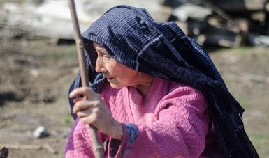 Mujer Indígena Dezplazada