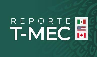 Reporte T-MEC