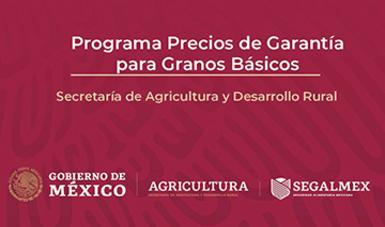 SEGALMEX ARRANCA PROGRAMA PRECIOS DE GARANTÍA