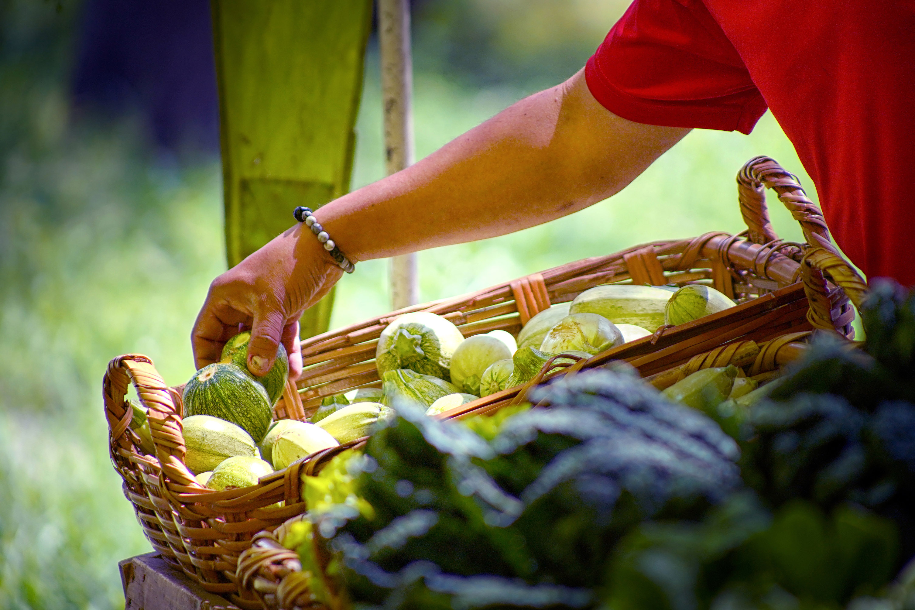 Venta directa de productores agroecológicos en el mercado de las cosas verdes.