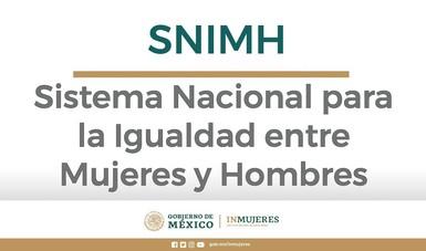 Banner Sistema Nacional para la Igualdad entre Mujeres y Hombres