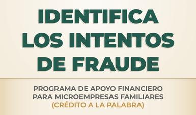 Programa de Apoyo Financiero para Microempresas Familiares, Crédito a la Palabra