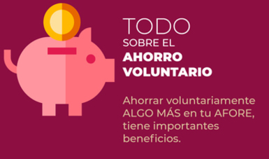 Todo sobre el Ahorro Voluntario