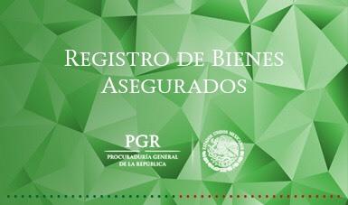 Registro de Bienes Asegurados