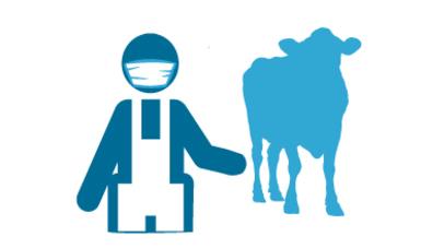 Programa de Sanidad e Inocuidad Agroalimentaria