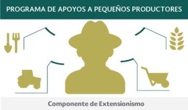 Componente de Extensionismo
