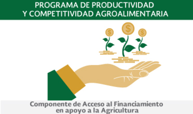 Componente de Acceso al Financiamiento en apoyo a la Agricultura