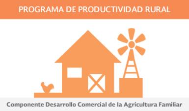 Componente Desarrollo Comercial de la Agricultura Familiar