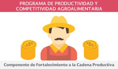 Componente de Fortalecimiento a la Cadena Productiva