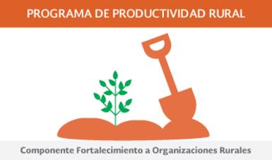 Componente Fortalecimiento a Organizaciones Rurales