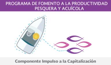 Componente de Impulso a la Capitalización