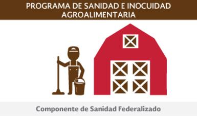 Componente de Sanidad Federalizado