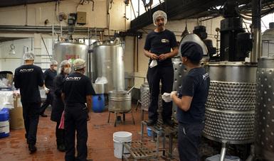 Varios trabajadores en un planta.