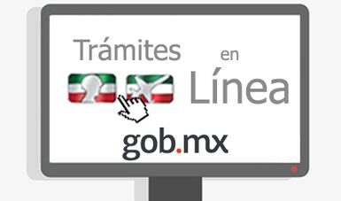 Texto de los trámites en línea de la SEDENA.