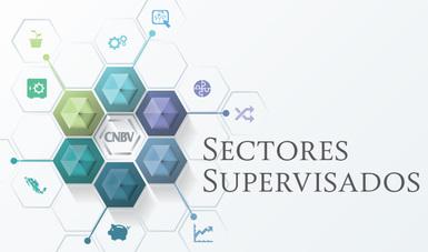 Sectores Supervisados