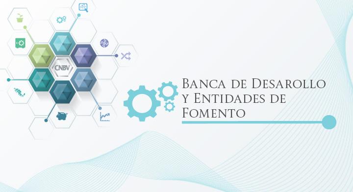Banca de Desarrollo y Entidades de Fomento