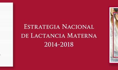Estrategia Nacional de Lactancia Materna 2014-2018