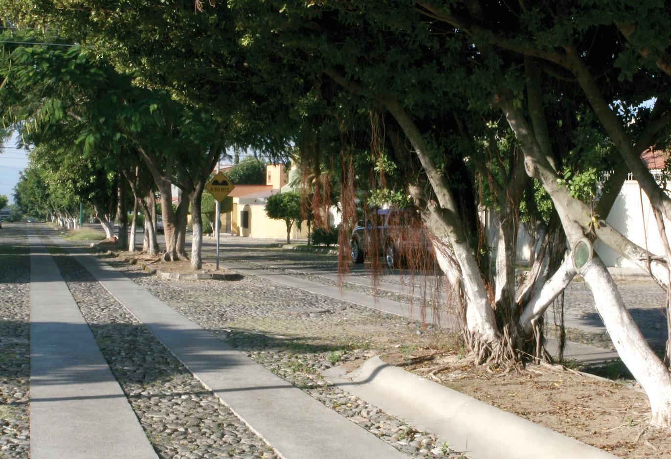 A través de una línea de crédito, contratada por el Municipio de Colima con Banobras, se financió la construcción de más de 3,470 metros lineales de huellas de rodamiento ecológicas, para la zona urbana y la localidad rural de Tepames, Colima.