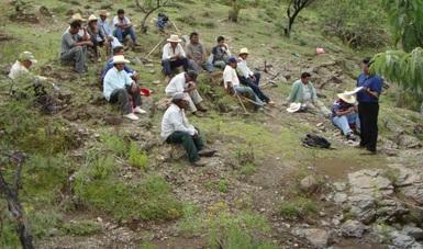 Listado de Asesores Técnicos Forestales