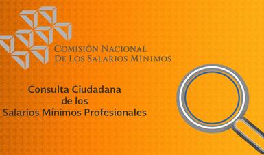 Consulta Ciudadana de los Salarios Mínimos Profesionales