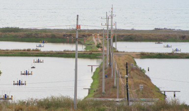 Programa Energía Eléctrica para Uso Acuícola