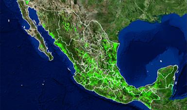 Información Geoespacial