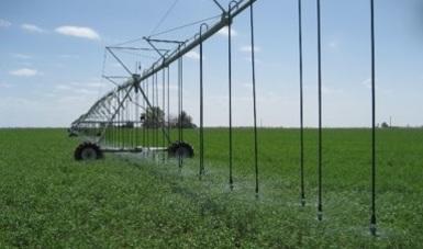 Programa de Apoyo a la Infraestructura Hidroagrícola (S217)