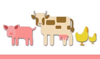 Acciones estratégicas de Salud Animal