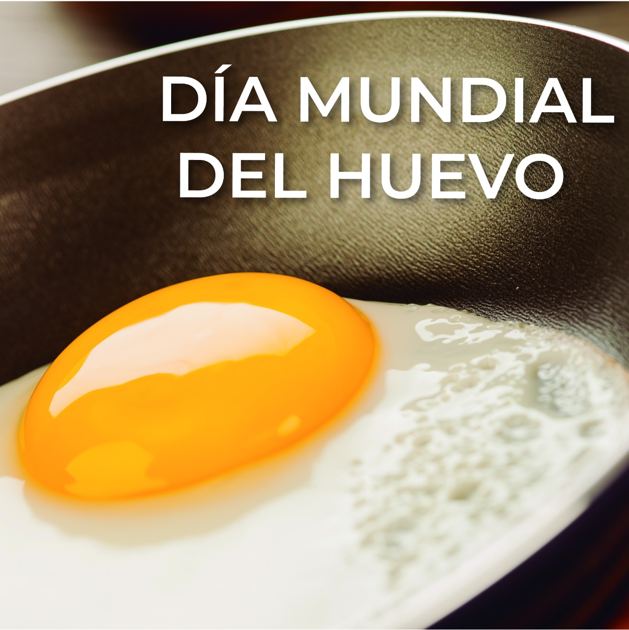 El segundo viernes del mes de octubre se ha destinado para recodar la importancia del huevo en la alimentación mundial